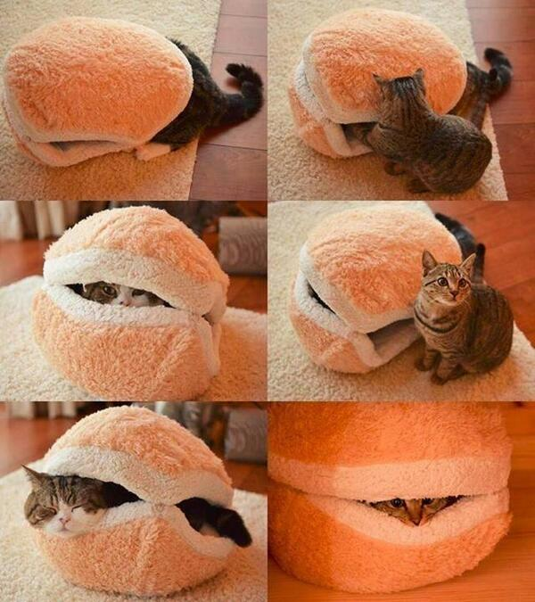 JANIS-EN-SUCRE - Tour du net 21 32 - hamburger pillow