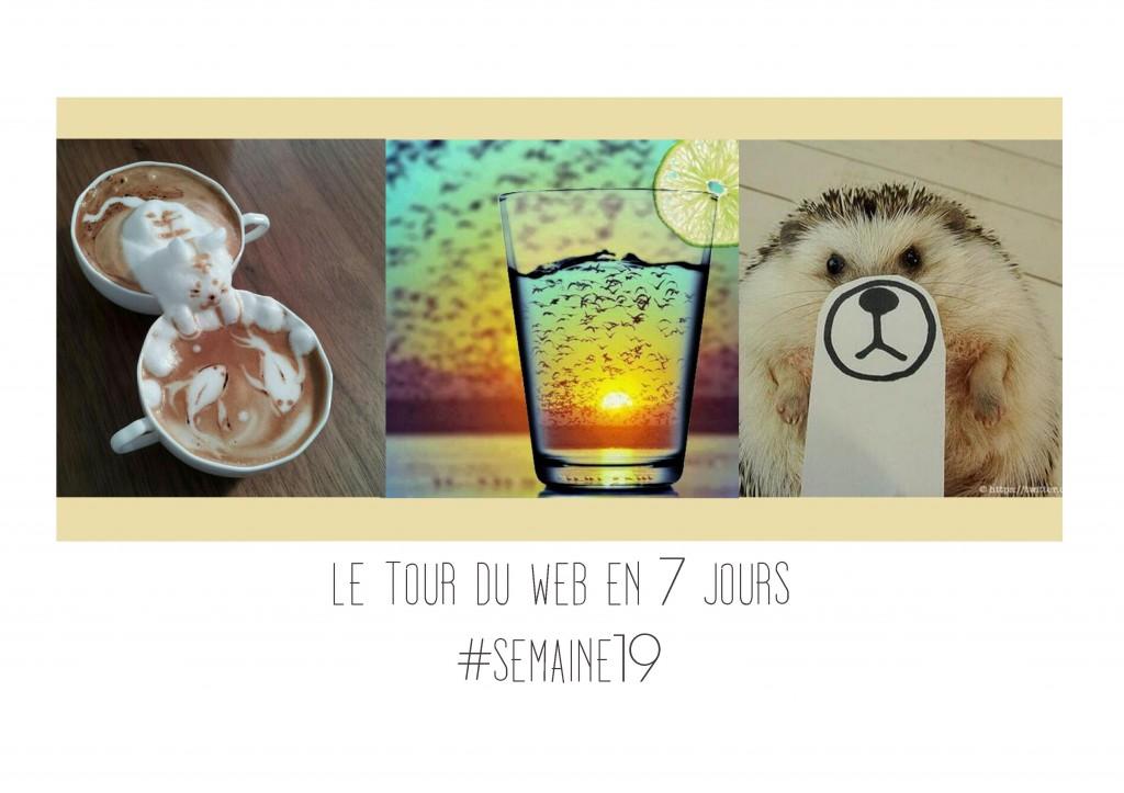 JANIS-EN-SUCRE - Tour du web 19 00