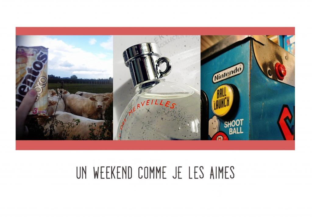 JANIS-EN-SUCRE-Weekend-flip-00c