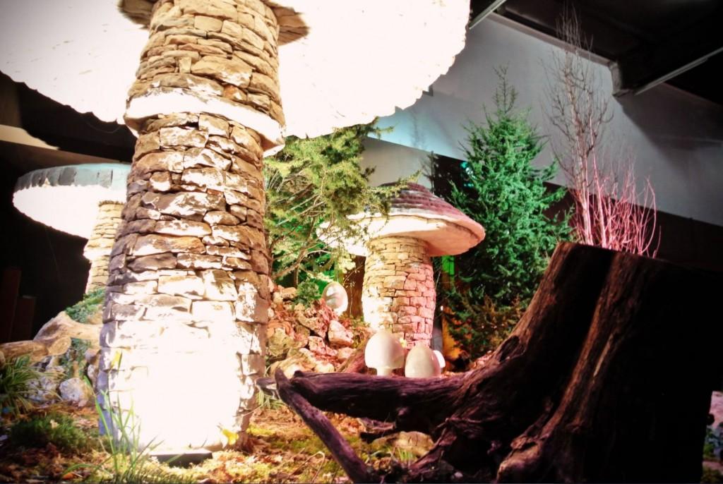JANIS-EN-SUCRE-Florissimo2015-02