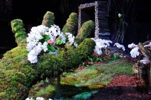 JANIS-EN-SUCRE-Florissimo2015-12