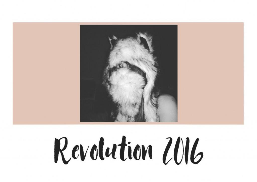 JANIS-EN-SUCRE-Révolution-2016-00