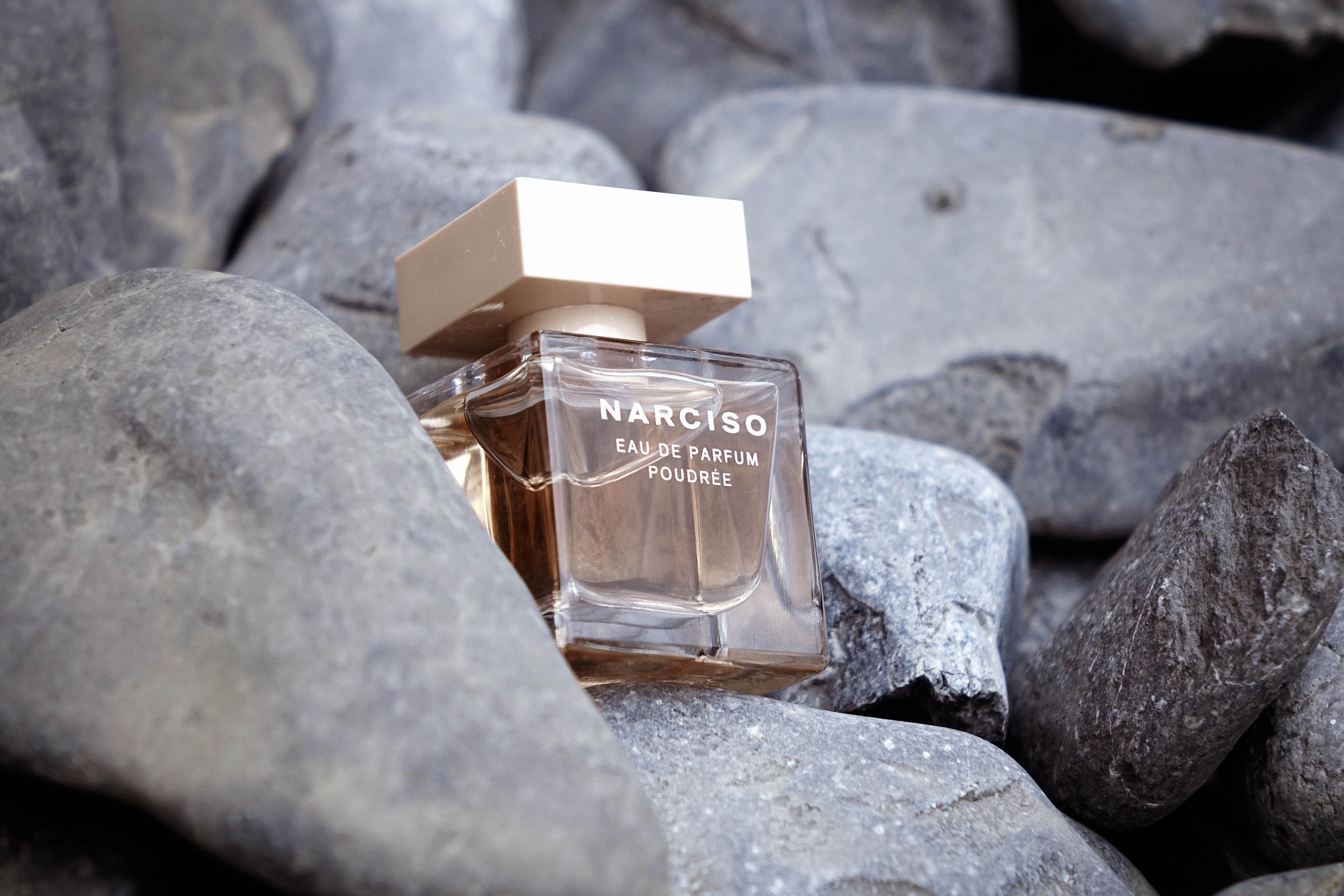 JANIS-EN-SUCRE-Narciso-Poudrée-06