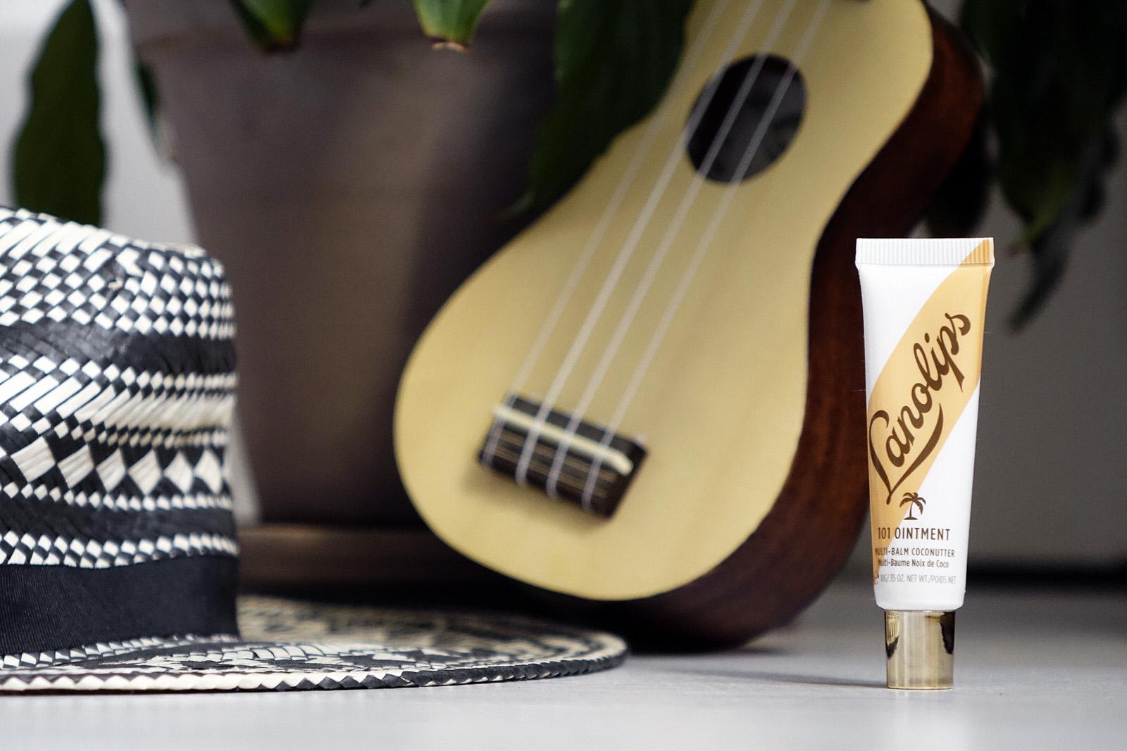 Le baume à lèvres à la noix de coco par Lanolips