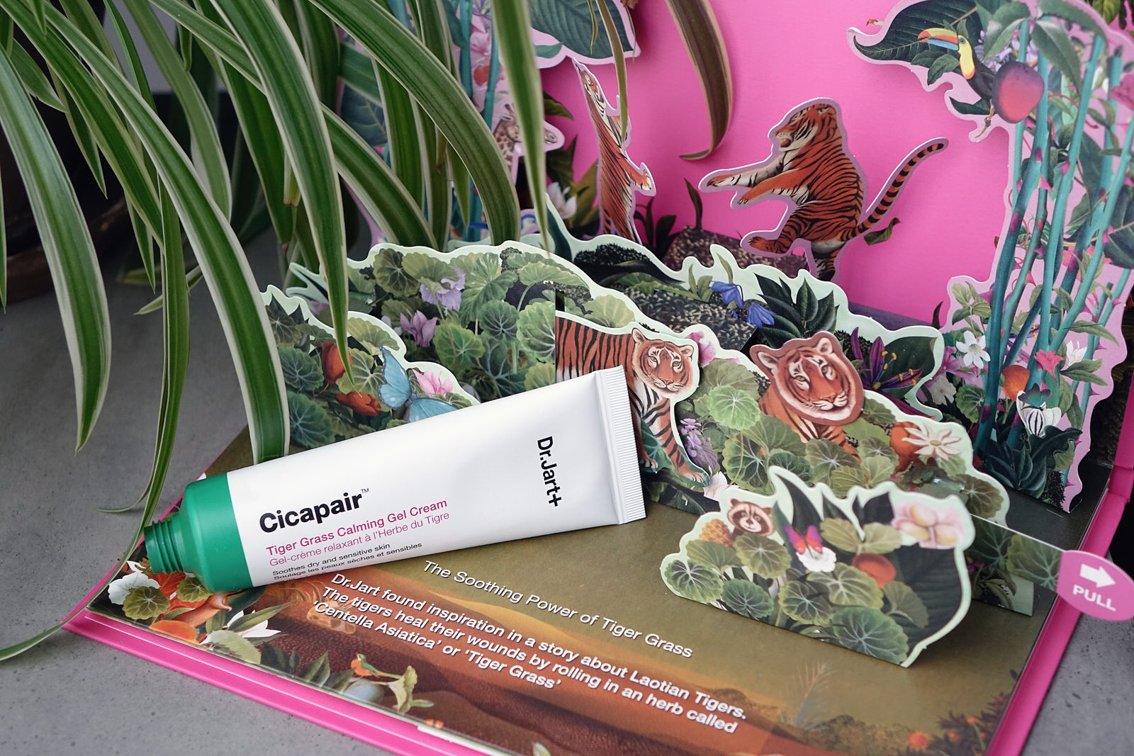 La gamme Cicapair du Dr Jart + Tiger Grass, test et avis