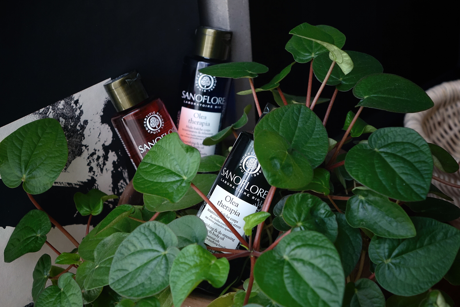 La gamme Olea Therapia de Sanoflore